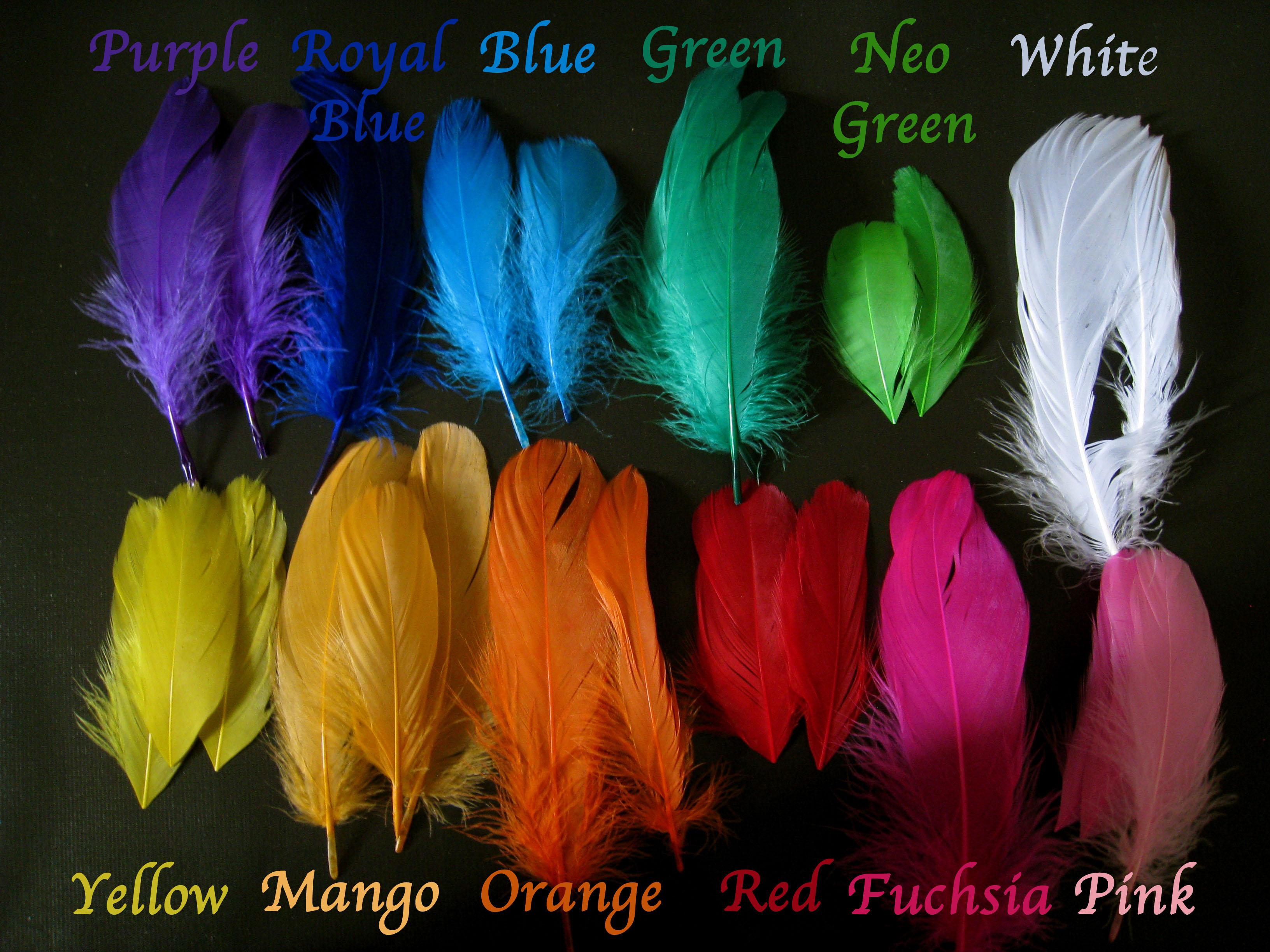 featherchart.jpg