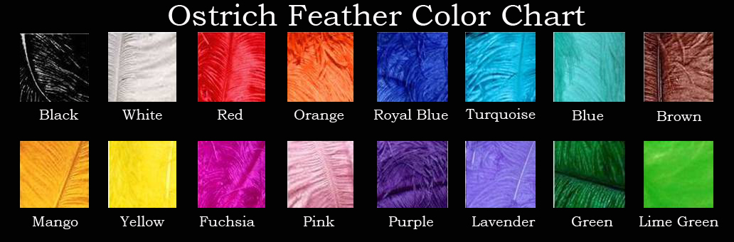 ostrich-color-chart.jpg